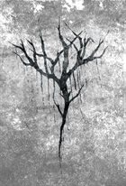 YHDARL The Essence II album cover