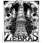ZEBRAS 2014 Demos album cover