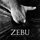 ZEBU At The Delta Of Venus album cover