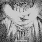 ZYLUM Prayer For Nothing album cover