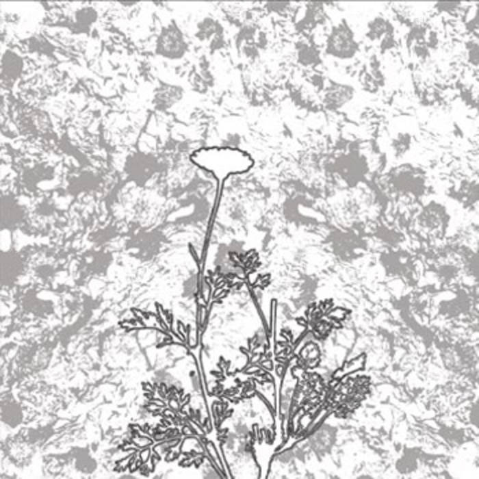 TITAN - The Chrysanthemum Pledge cover