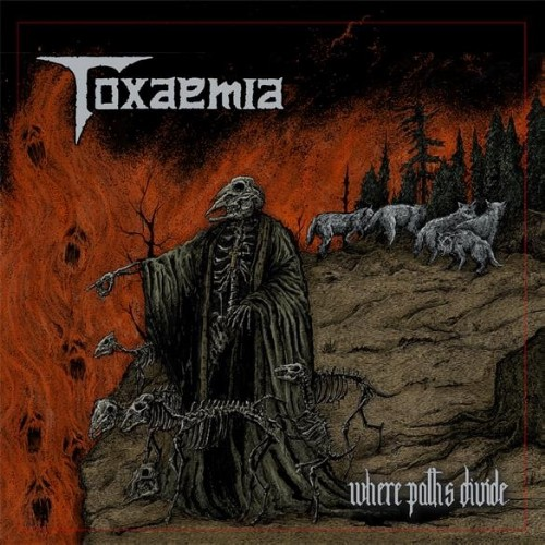 TOXAEMIA - Where Paths Divide cover