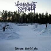WOODS OF INFINITY - Frozen Nostalgia cover