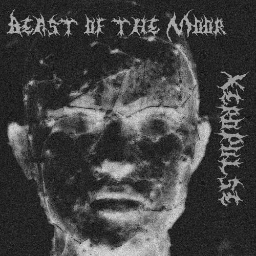 XEROPULSE - Beast of the Moor cover