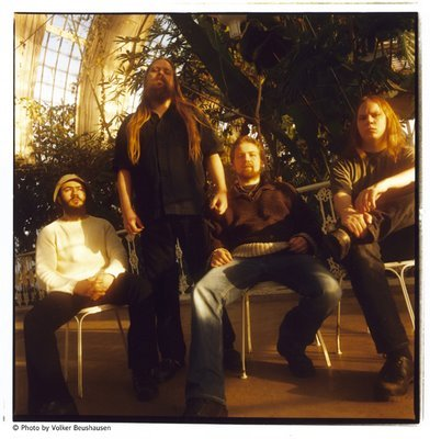 THE MUSHROOM RIVER BAND picture