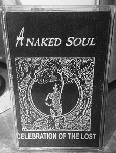 A NAKED SOUL - Celebration Of The Lost cover