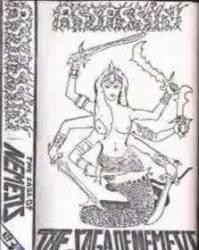 ASSASSIN - The Saga of Nemesis cover