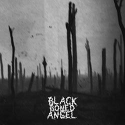 BLACK BONED ANGEL - Verdun cover