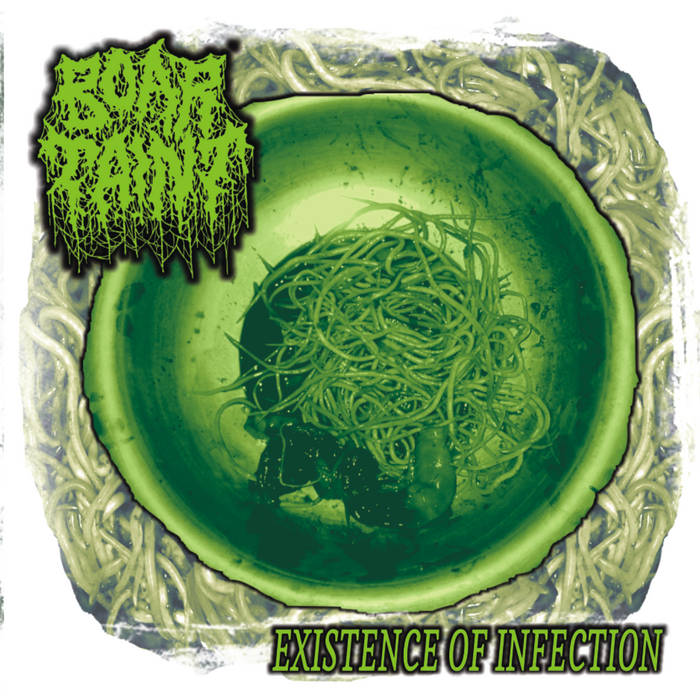 BOAR TAINT - Existence of Infection cover