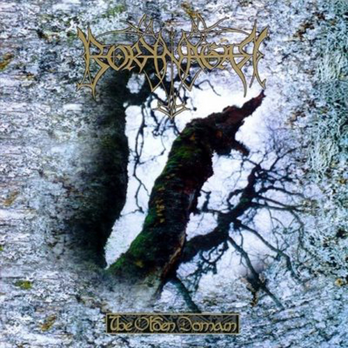 BORKNAGAR - The Olden Domain cover