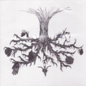 CIRCLE OF OUROBORUS - Tree of Knowledge cover