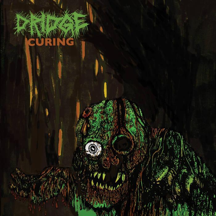 DRIDGE - Curing cover