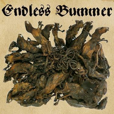 ENDLESS BUMMER - Fritzl cover