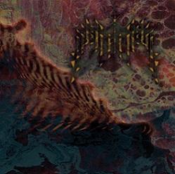 FANISK - Insularum cover