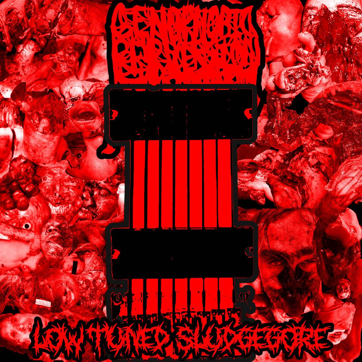 GENOPHOBIC PERVERSION - Low Tuned Sludgegore cover