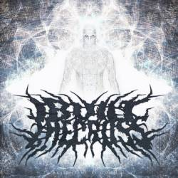 I BUILT THE CROSS - Banish The Disconnect cover