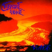 MENTAL HOME - Vale cover