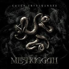 MESHUGGAH - Catch Thirtythree cover