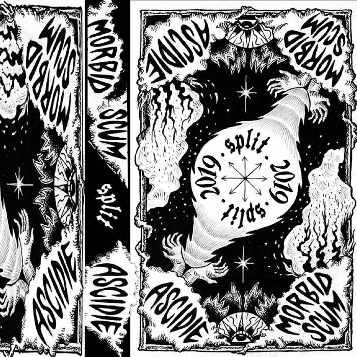 MORBID SCUM - Morbid Scum / Ascidie cover