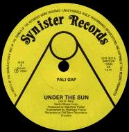 PALI GAP - Under The Sun cover