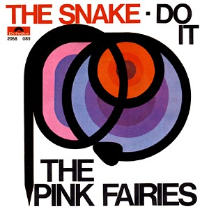 PINK FAIRIES - The Snake / Do It cover