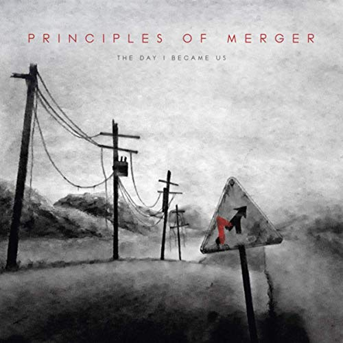 PRINCIPLES OF MERGER - The Day I Became Us cover