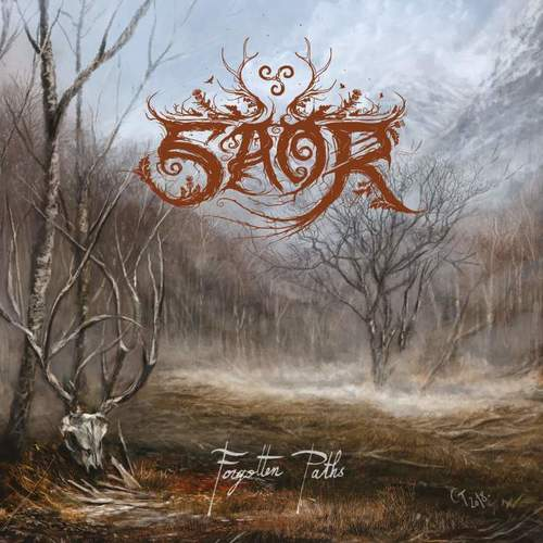 SAOR - Forgotten Paths cover