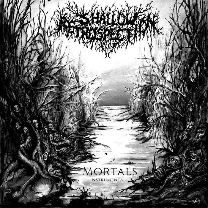 SHALLOW RETROSPECTION - Mortals (instrumental) cover
