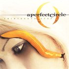 A PERFECT CIRCLE Thirteenth Step album cover