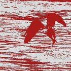 AGAINST NATURE Chasing Eagles album cover