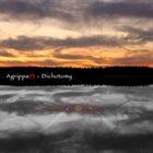 AGRIPPA93 Dichotomy album cover