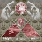 ALEPH NULL Nocturnal album cover