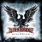 ALTER BRIDGE Blackbird album cover