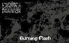 AORTIC DILATATION Burning Flesh album cover