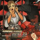 APARTMENT 213 Domestic Powerviolence album cover
