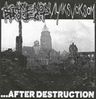 AYAKSVOKSOM ...after Destruction album cover