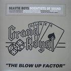 BEASTIE BOYS Scientists of Sound album cover