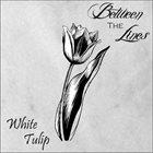 BETWEEN THE LINES White Tulip album cover