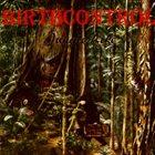 BIRTH CONTROL Jungle Life album cover