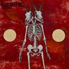 BLACK SHEEP WALL It Begins Again album cover