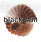 BLACK SUN Fleshmarket album cover