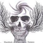 BLACKHOLE Harness album cover