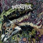 BONGRIPPER Terminal album cover
