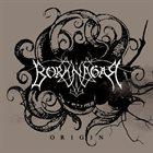 BORKNAGAR Origin album cover