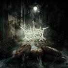 BRADI CEREBRI ECTOMIA Mangled Perception album cover