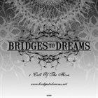 BRIDGES TO DREAMS Call Of The Hive album cover