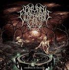 BRYAN ECKERMANN Creeping in the Dark album cover