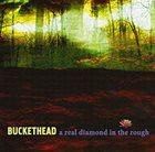 BUCKETHEAD A Real Diamond in the Rough album cover