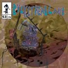 BUCKETHEAD Pike 53 - City of Ferris Wheels album cover