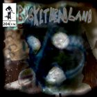 BUCKETHEAD Pike 204 - 3 Days Til Halloween: Crow Hedge album cover